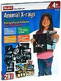 Roylco R5910 Animal X-Ray Set, 8