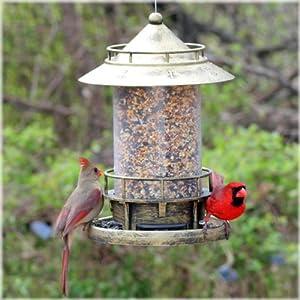 Avant Garden N02 Marque 2.75-Pound Wild Bird Seed Feeder
