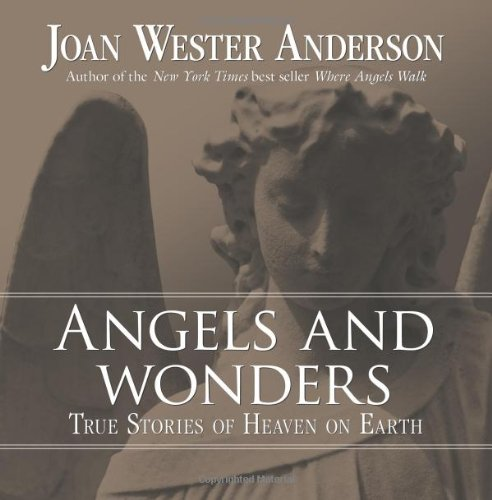 Angels and Wonders : True Stories of Heaven on Earth by Joan Wester Anderson (2008, Paperback)