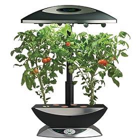 AeroGrow AeroGarden 6 Elite Plus with Mega Cherry Tomato Seed Kit, Black with Stainless Accents