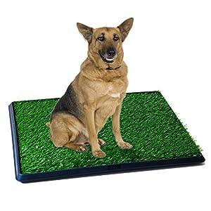 Amazon.com : Synturfmats Pet Potty Patch Training Pad for
