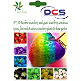 DCS (077) 30 Rinbow Strawberry Seeds,giant Strawberry,rare Bonsai Organic Fruit Seeds,9 Colours,strawberry Plants...