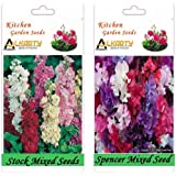 Alkarty Stock Mixed And Sweet Peas Spencer Mixed Seeds Pack Of 20 (Winter)