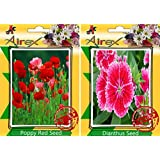 Airex Poppy Red And Dianthus Flower Seeds ( Pack Of 30 Seeds Per Packet)