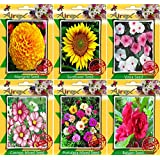 Airex Marigold ,sunflower,vinca,cosmos Mixed,portulaca Mixed,balsam Seeds ( Pack Of 10 Seeds Per Packet)