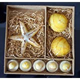 My Party Suppliers Starfish Decorative Festival Candle Set / Shell Decorative Candle Set / Beach Themed Candle...