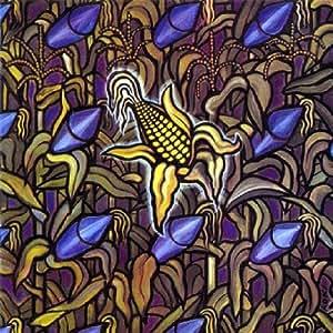 Against the Grain/Reissue - Bad Religion: Amazon.de: Musik