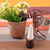 Practical Indoor Plant Flower Pot Waterers Auto Drip Irrigation Watering System