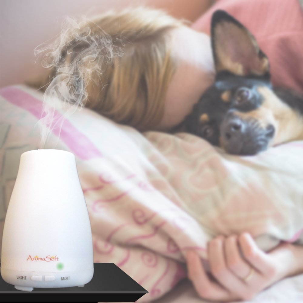 Aromatherapy Essential Oil Diffuser by AromaSoft