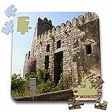 Angelique Cajam India - Fort Gloconda castle - 10x10 Inch Puzzle (pzl_26793_2)