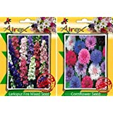 Airex Larkspur Fire Mixed And CornFlower Seeds ( Pack Of 30 Seeds Per Packet)