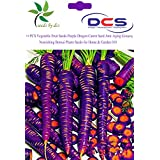 (018) Vegetable Fruit Seeds Purple Dragon Carrot Seed Anti-aging Ginseng Nourishing Bonsai Plants Seeds For Home...