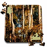 Danita Delimont - Alison Jones - Trees - USA, Louisiana, Atchafalaya Basin, Pierce Lake, bald cypress, sunrise - 10x10 Inch Puzzle (pzl_189360_2)