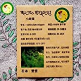 Foeniculum Vulgare Seed 50pcs Cumin Seed Whole Plant Aromatic Grow Quickly Spices,seed Potted Vegetable Seed Seasoning...