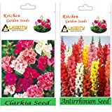 Alkarty Clarkia Mixed And Antirrhinum Snapdragons Seeds Pack Of 20 (Winter)