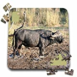 Angelique Cajam Safari Buffalos - South African Buffalo in mud side view - 10x10 Inch Puzzle (pzl_20119_2)