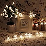 InnooTech Led Sakura Battery Operated String Fairy Light Flower Outdoor Indoor Christmas Tree Light Warm White 40 Led