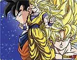 FUNimation - Dragon Ball Z - Dragon Ball Z Goku Forms - Nintendo DS Lite - Skinit Skin