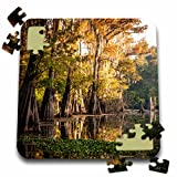 Danita Delimont - Alison Jones - Trees - USA, Louisiana, Atchafalaya Basin, Pierce Lake, bald cypress, sunrise - 10x10 Inch Puzzle (pzl_189361_2)