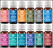 Breathe Synergy Blend Essential Oil. 10 ml. 100% Pure, Undiluted, Therapeutic Grade. (Eucalyptus, Peppermint, Tea Tree, Lemon, Lavender, Cardamom, Bay)