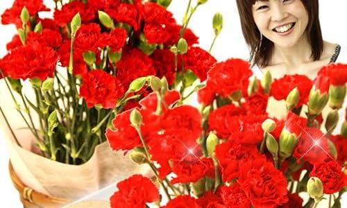 母の日ギフト 花鉢カーネーション 花とスイーツセット (赤色の生花)