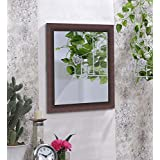 Art Street Marble Red Wall Mirror (16 X 20 Inch)