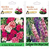 Alkarty Clarkia Mixed And Larkspur Fire Mixed Seeds Pack Of 20 (Winter)