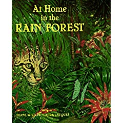 At Home in the Rainforest