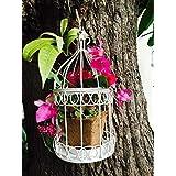 The Garden Store Birdcage Planter