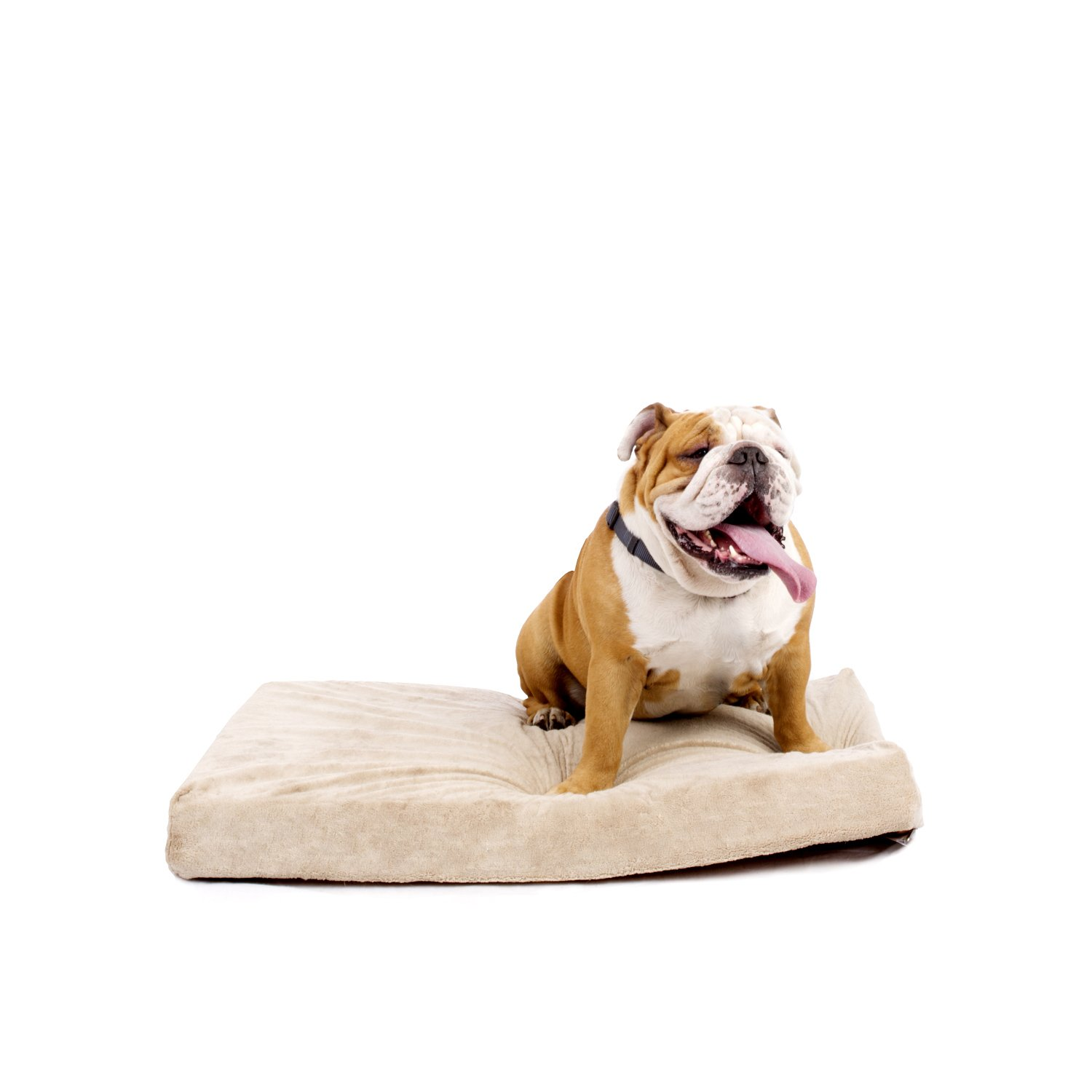 Best Orthopedic Dog Beds For Large Dogs