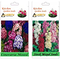 Alkarty Cineraria And Stock Mixed Seeds Pack Of 20 (Winter)