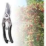 Sellify Black : Various Pruning Shears Cutter Garden Plant Scissors Branch Yard Pruner Snip Tool