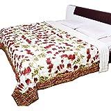 AADI ENTERPRISES Jaipuri Leafy Multi Color Floral Print Pure Cotton Double Razai Quilt
