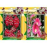 Airex Verbena And Hollyhock Flower Seeds ( Pack Of 30 Seeds Per Packet)
