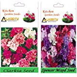 Alkarty Clarkia Mixed And Sweet Peas Spencer Mixed Seeds Pack Of 20 (Winter)