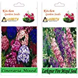 Alkarty Cineraria And Larkspur Seeds Pack Of 20 (Winter)