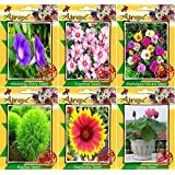 Airex Morning Glory,Cosmos,Gaillardia,Portulaca Mixed,Kochia,Zinnia,Lotus Seeds ( Pack Of 10 Seeds Per Packet)