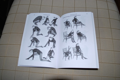 Image from inside the book.