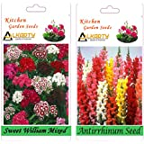 Alkarty Sweet William And Antirrhinum Snapdragons Seeds Pack Of 20 (Winter)