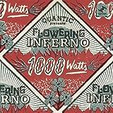 1000 Watts [帯解説・ボーナストラック4曲収録 / 国内盤CD] (BRC514)