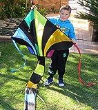 Kite Kites - Large Size 49