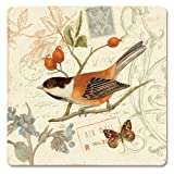 CounterArt Songbirds Hardboard Coasters, Set Of 4