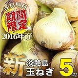 淡路島産 玉ねぎ 5kg 2016年新玉ねぎ