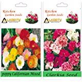 Alkarty Poppy Californian Mixed And Clarkia Flower Seeds Pack Of 20 (Winter)