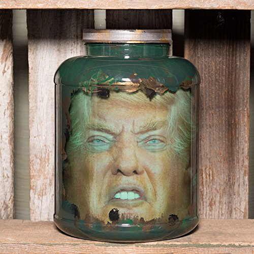 Trump and Clinton Halloween Costumes - Choose Edgy or Funny - Donald Trump Head in Jar -