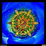 Rose Kaleidoscope 02 Canvas Medium ( 30 In X 30 In )