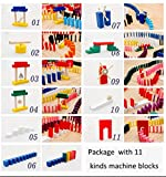 Lewo 1000-piece Classic Wooden Domino Set Racing Games & Imagination Building Blocks