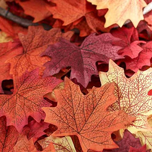 Factory Direct Craft Package of Approximately 140 Assorted Rich Fall Colored Silk Maple Leaves for Weddings, Events and Decorating