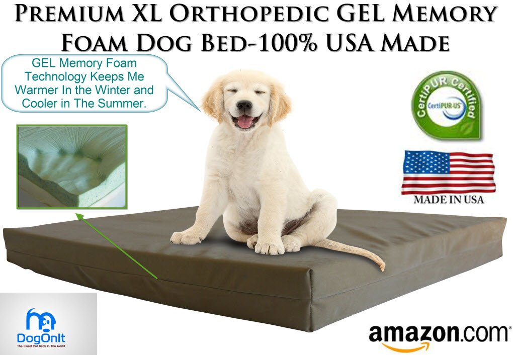 memory foam dog bed reviews