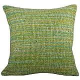 Svisti Raw Silk Single Piece Cushion Cover-Green, 40.64 Cm X 40.64 Cm - B00N3NYUXO